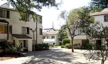 UC - Santa Cruz